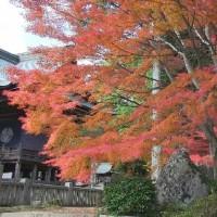 秋色を訪ねて―龍泉寺