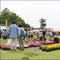 「園芸祭り」・・