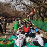 上野公園・・今日模様・・こさのぼ散歩。