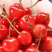 梅雨の果物