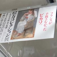 見上げればピカソ(^o^)/ 今夜の鍋!