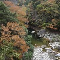 面河渓関門の様子(11月11日)
