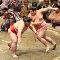 「宇良6勝目!土俵際でヒラリ華麗に舞った!」とのニュースっす。
