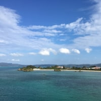 イルカショーと古宇利島