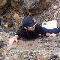 海と岩とカニ