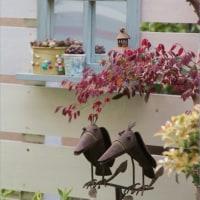 素敵な窓枠ミラー&クレマチス柿生開花~♪゚+(*'∪'*)ルン♪ ゚+。