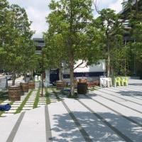 開業後の東京ガーデンテラス:弁慶濠沿いの散策道とテラス PART1
