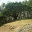 長野県伊那地方の林道探索(鹿嶺高原中腹)