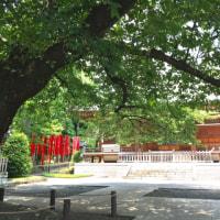 2017.6.23 お墓参りと石橋