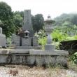 恒例の高齢者による墓掃除帰省