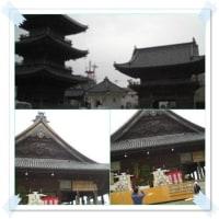 神崎の梅林&西大寺観音院あと祭り