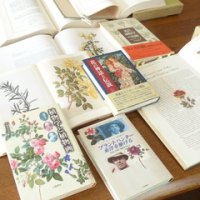 『植物学と植物画』