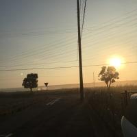 碧南市の朝