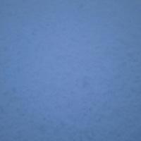久々の積雪ニャン ……  ★(^^)v