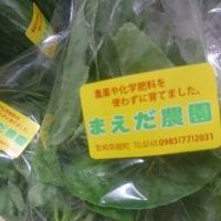 今日の野菜セット