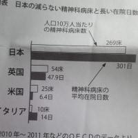 日本の闇 世界一の精神病院の数を有する異常な国 WHOから改善命令あっても聞く耳持たない国