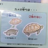 飯田動物園