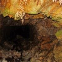 11 高見山・船倉山(559・546m:廿日市市)登山(続き)  大野鉱山 本坑跡