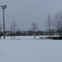 雪雪雪・・・