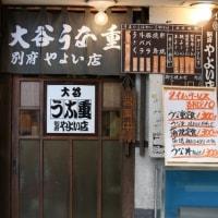別府路地裏にゃん(12)