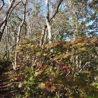 10月の函館山