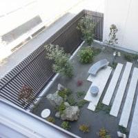 マンションの中庭