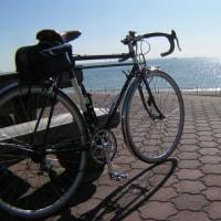 サイクリング 死亡リスク軽減
