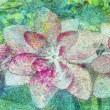 今週末開催!『幻想的に描く夏の花-様々な「画材」と「技法」で表現する-』のご案内