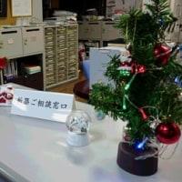 【カトリホーム】 ~ クリスマス編 ~ №7