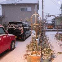 群馬も初雪
