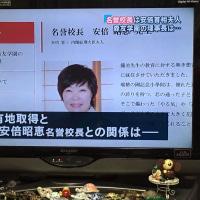 2017年2月23日学校法人森友学園HPから安倍昭恵氏の写真も名前も挨拶も全て削除された。