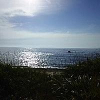 今日の日本海