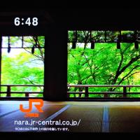 5/23 そうだ 奈良に行こう