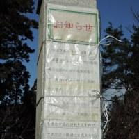 楯山公園に鳥除け磁石を設置しました