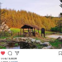 2017/06/25  ジェジュン Instagram 祭り