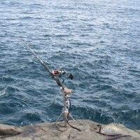 夏の終わりの石鯛釣り