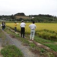 宮城県米づくり推進気仙沼地方本部の現地調査を開催しました