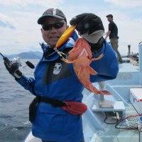 4/25(火):青物渋くもアクションでバッチリブリゲット!!根魚は好調にヒット( -.-) =зフウー