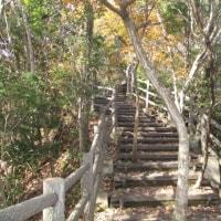 笹川湖展望台