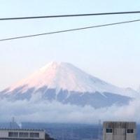 静岡セノバでラ・ラ・ランド