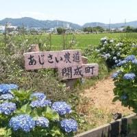 ◇中川温泉に行く(山北町)