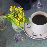モーニング〇カフェ『菜の花』