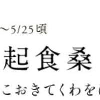 大根畑(⌒‐⌒)