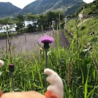 5月21日 鹿児島にお出かけ 写真集