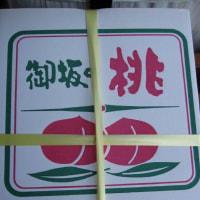 山梨産 御坂の美味しい桃を頂いた
