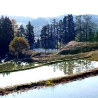 新潟県・上越市の棚田巡り(上越市・牧区の「平方の棚田」)