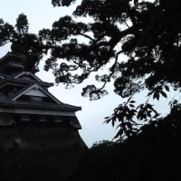 熊本市内観光