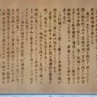 コスタ・クルーズ~舞鶴港