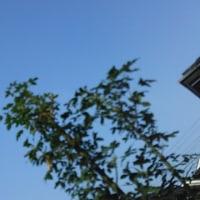 仙台の空6月23日、金曜日