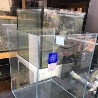 中古コトブキレグラス400×400×500ガラス水槽